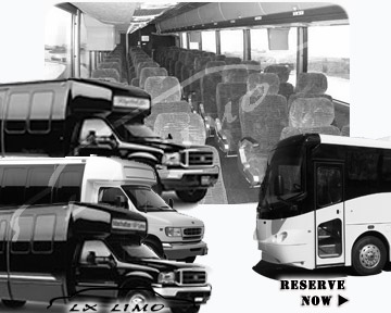 Bus rental 36 passenger