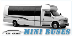 Mini Bus rental in Las Vegas, NV